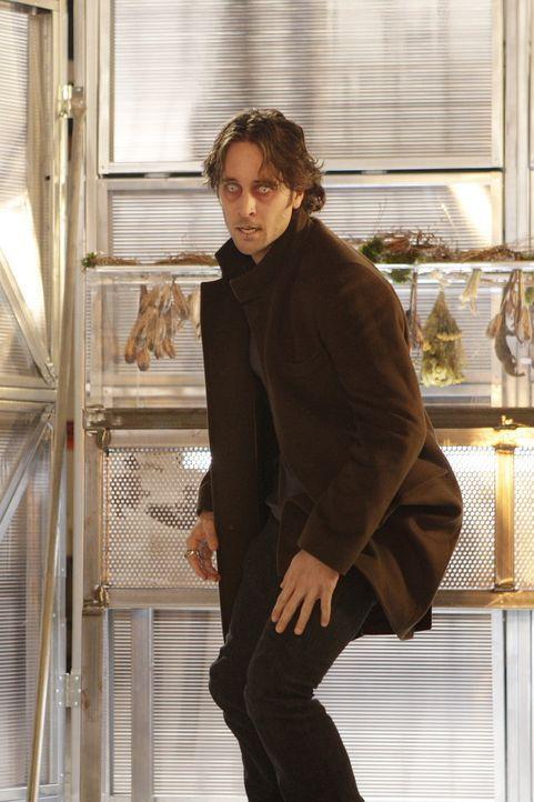 Um wieder ein Mensch sein zu können, riskiert Mick (Alex O'Loughlin) viel. Doch nicht alle Vampire können seinen sehnlichsten Wunsch verstehen, un... - Bildquelle: Warner Brothers