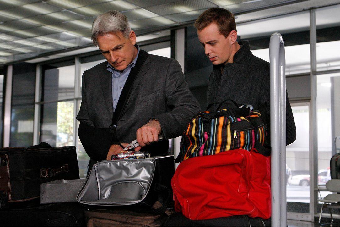 Ein neuer Fall wartet auf Gibbs (Mark Harmon, l.), McGee (Sean Murray, r.) und das restliche Team ... - Bildquelle: CBS Television