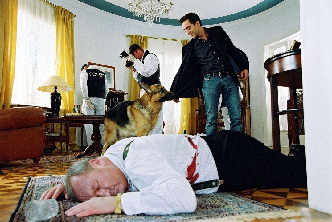 Als Marc (Alexander Pschill, r.) und Rex am Tatort eintreffen, erkennt Rex, dass der für tot erklärte Elmar Baumann (Peter Josch, liegend) noch le... - Bildquelle: Sat.1