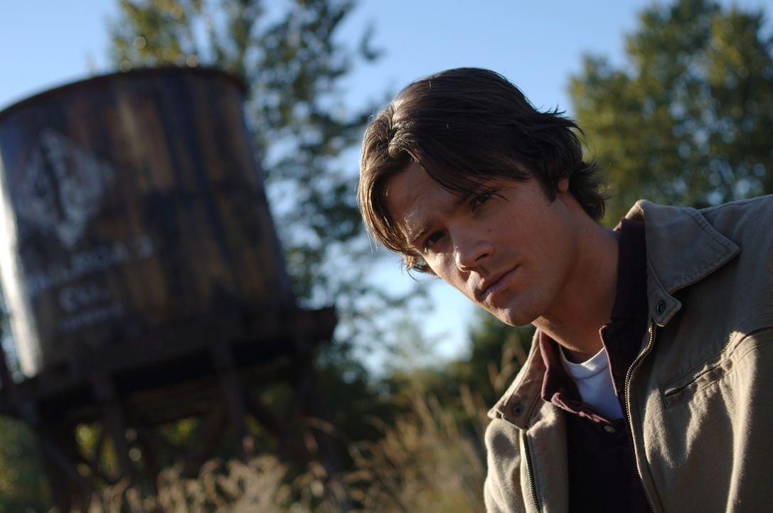 Zwei eigenartige Mordfälle, bei denen Höllenhunde eine Rolle spielen, beschäftigen Sam (Jared Padalecki) und seinen Bruder Dean ... - Bildquelle: Warner Bros. Television