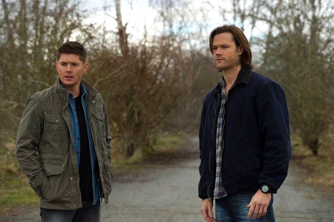 Während Sam (Jared Padalecki, r.) in der Hölle ums Überleben kämpft, macht Dean (Jensen Ackles, l.) die Bekanntschaft mit einer Vertreterin des Himm... - Bildquelle: Warner Bros. Television