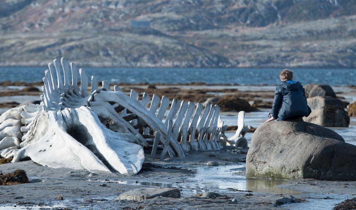 Leviathan-Wild-Bunch-Germany - Bildquelle: Wild Bunch Germany
