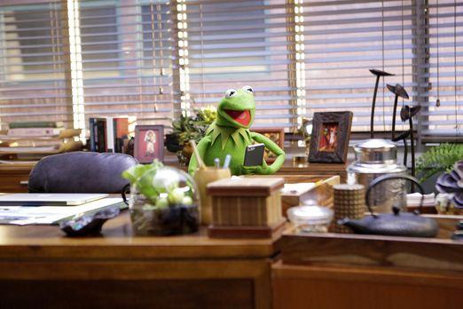 The Muppets - Die Vorbereitungen für eine neue Show sind in vollen Gange: Ker...