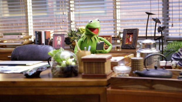 Die Vorbereitungen für eine neue Show sind in vollen Gange: Kermit ... © Nico...