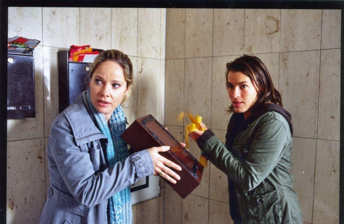 Gundi (Jule Gartzke, r.) hat Therese (Ann-Kathrin Kramer, l.) auf eine dumme Idee gebracht: Therese schaltet unter falschem Namen eine Kontaktanzeig... - Bildquelle: Astrid Wirth Sat.1