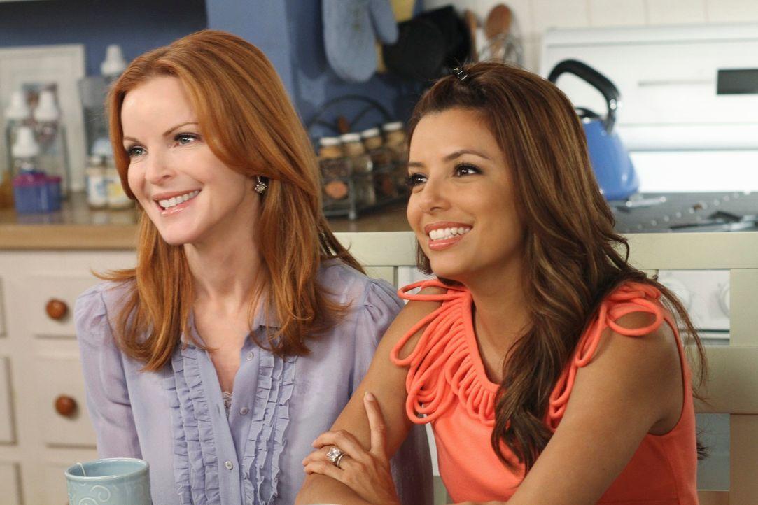 Neue Überraschungen warten auf Bree (Marcia Cross, l.) und Gabrielle (Eva Longoria, r.) ... - Bildquelle: ABC Studios