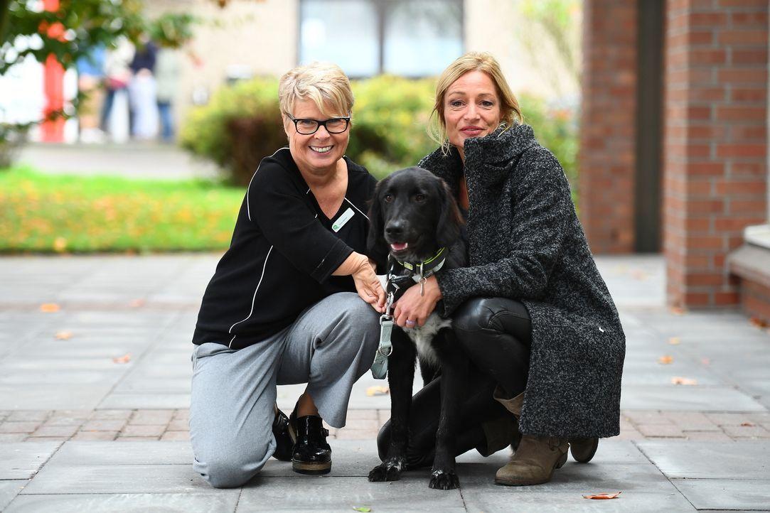 Hundetrainerin Sabine Hulsebosch (r.) findet in einem Tierheim Nero - sie möchte den verspielten Hund speziell für Silvias (l.) Bedürfnisse und Eins... - Bildquelle: Willi Weber SAT.1