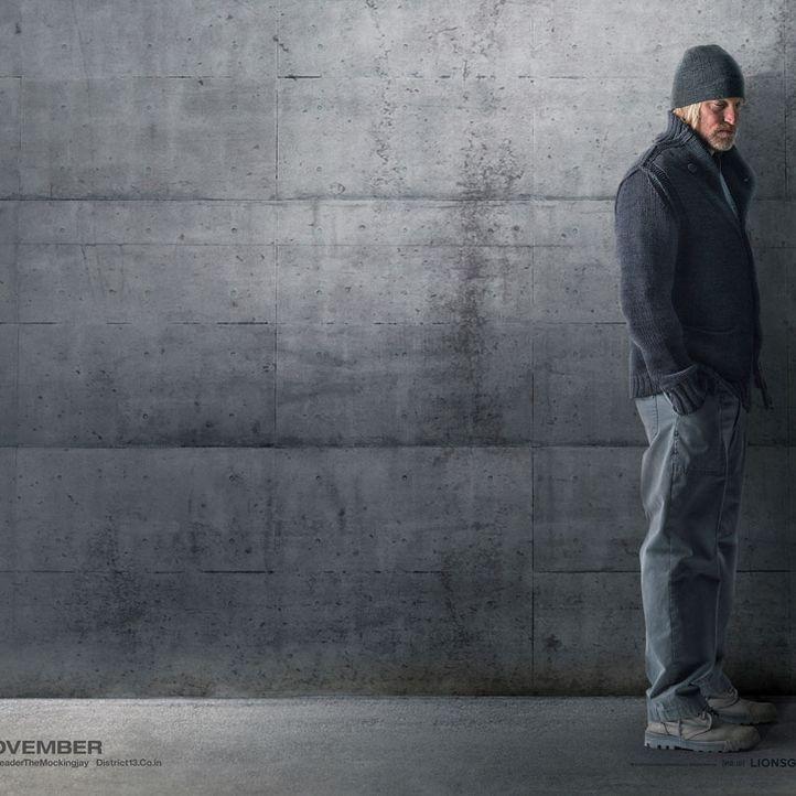 Die Tribute von Panem: Haymitch, MOCKINGJAY - Bildquelle: Lionsgate