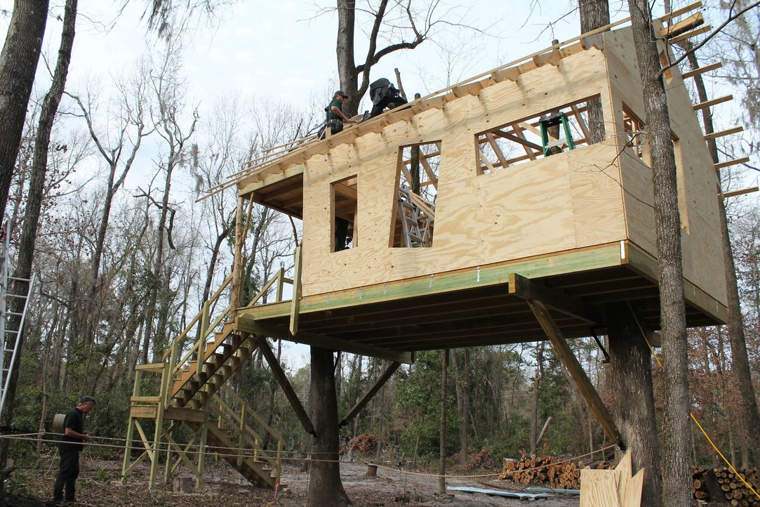 Mit viel Liebe zum Detail wird für Familie Shea und ihre Hunde hoch oben in den Bäumen eine wahre Wohlfühloase erschaffen ... - Bildquelle: 2015, DIY Network/Scripps Networks, LLC. All Rights Reserved.
