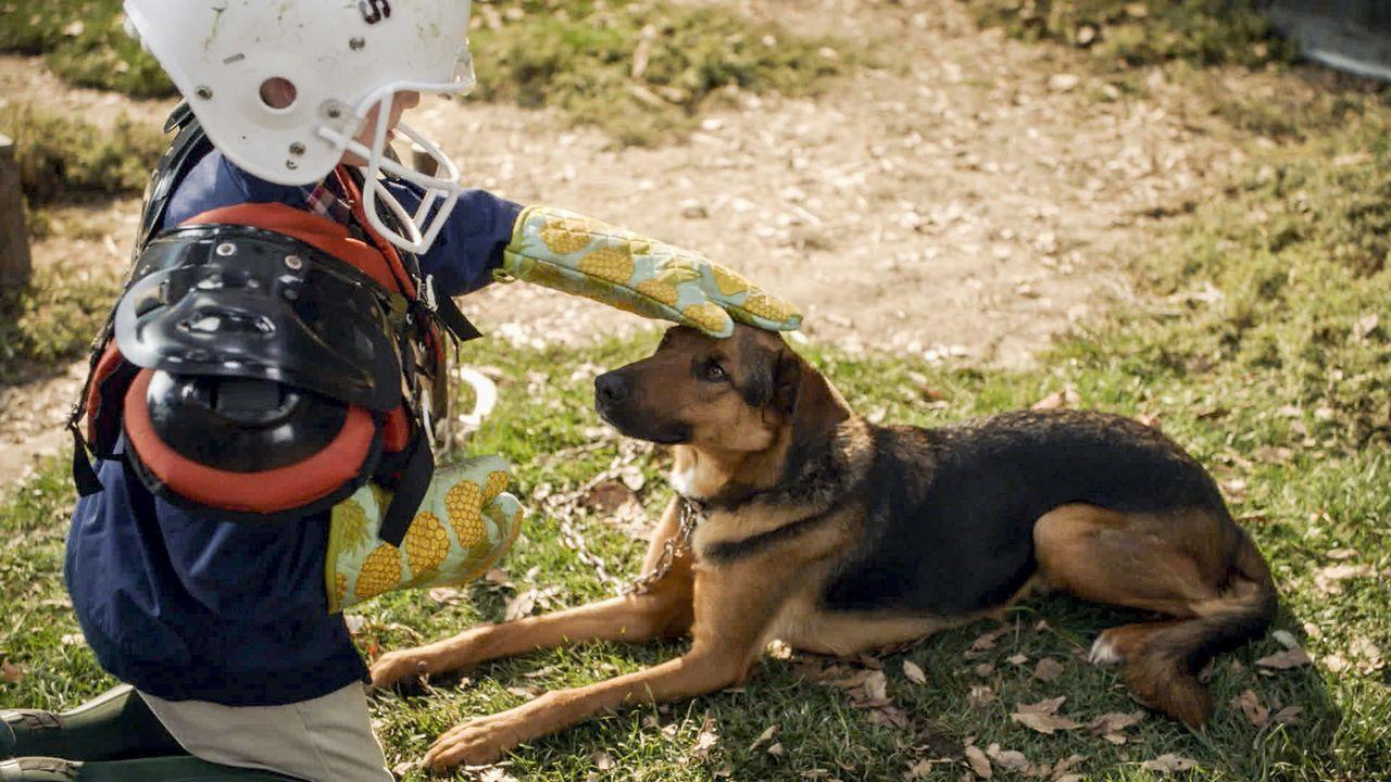 Wird es Sheldon (Iain Armitage) tatsächlich gelingen, seine Phobie gegen Hunde zu überwinden? - Bildquelle: Warner Bros. Television