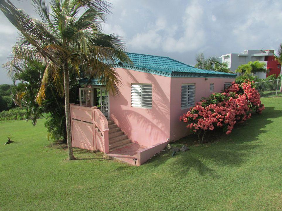 Auf der Suche nach einem Haus im Paradies stoßen Car und Janna Halberg auf die Cane Garden Villa. Doch leider liegt das traumhafte Anwesen 150.000 $... - Bildquelle: 2013, HGTV/Scripps Networks, LLC. All Rights Reserved.