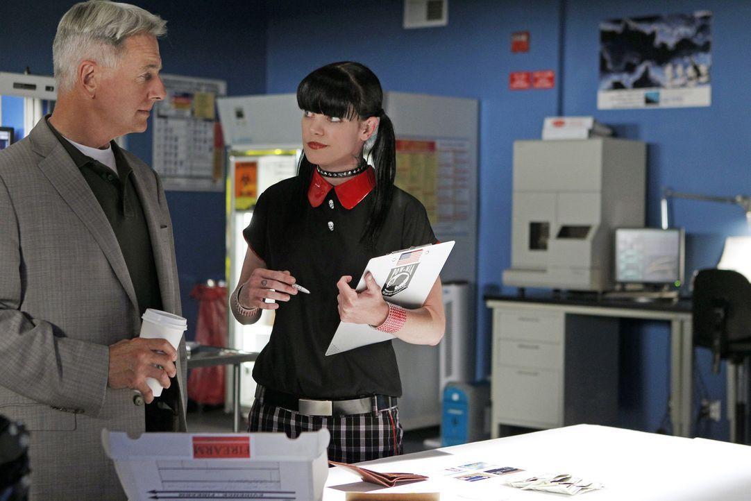 Die Ermittlungen laufen auf Hochtouren: Abby (Pauley Perrette, r.) und Gibbs (Mark Harmon, l.) ... - Bildquelle: CBS Television