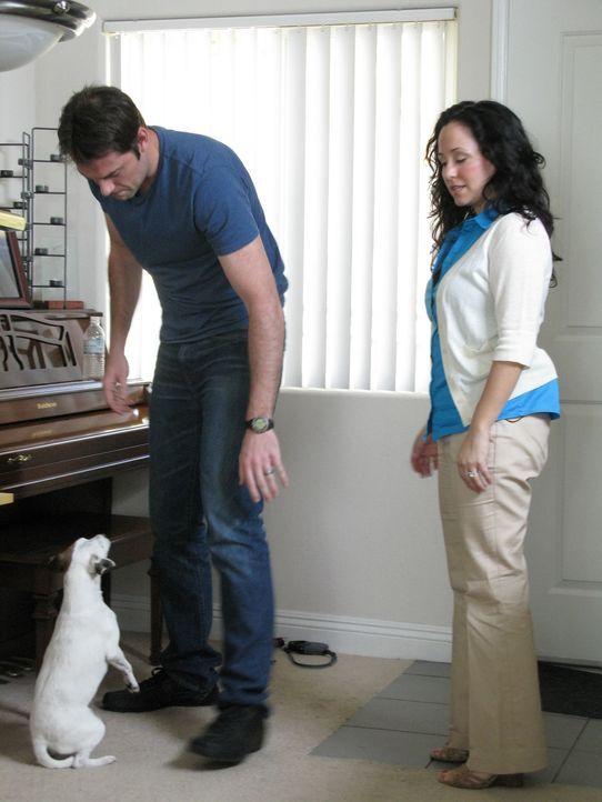 Heute muss Cesar nicht nur Hunde therapieren, er ist sogar verantwortlich für die Zukunft zweier Beziehungen: Ein frisch verheiratetes Pärchen ruft... - Bildquelle: Neal Tyler MPH - Emery/Sumner Joint Venture