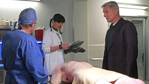 Ermitteln in einem neuen Fall: Gibbs (Mark Harmon, r.), Abby (Pauley Perrette...