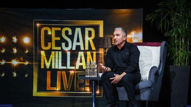 Cesar Millan Tour 2018