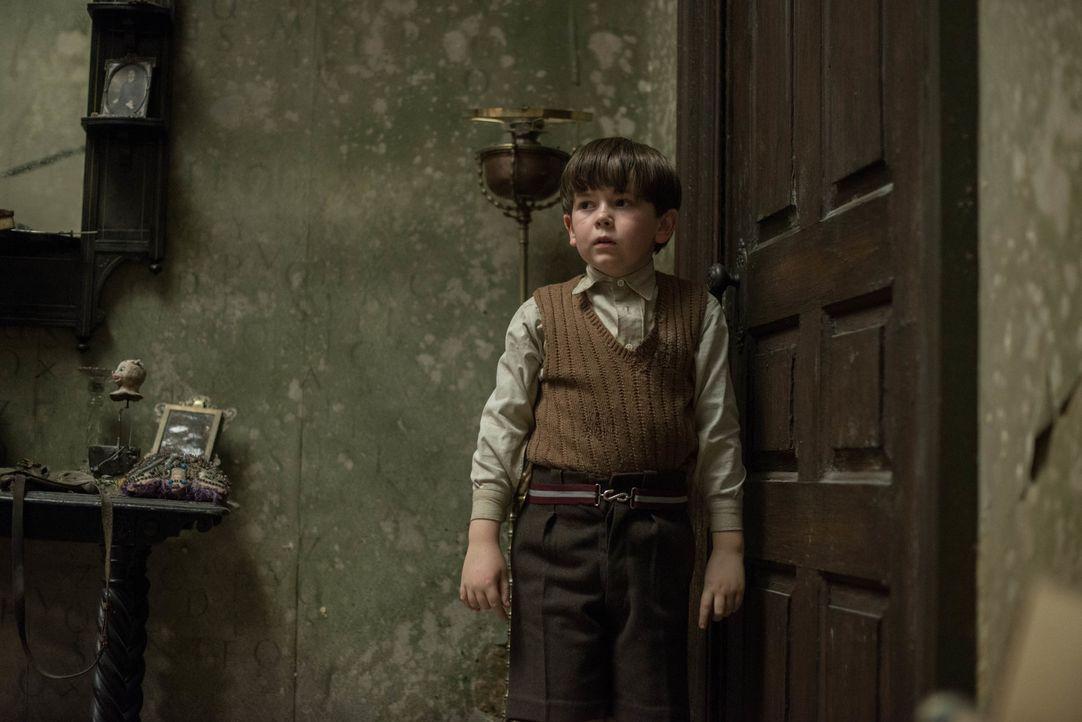 Seit der kleine Edward (Oaklee Pendergast) seine Eltern durch einen Bombenangriff verloren hat, zieht er sich immer weiter zurück. Doch nachdem er i... - Bildquelle: Nick Wall Angelfish Films Limited 2014 Photo