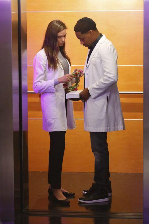 Müssen sich mit einer Patientin auseinandersetzen, die sich mit einem gefährlichen, ansteckenden Bakterium infiziert hat, während sie ganz nebenbei... - Bildquelle: Bill Inoshita 2016 CBS Broadcasting, Inc. All Rights Reserved