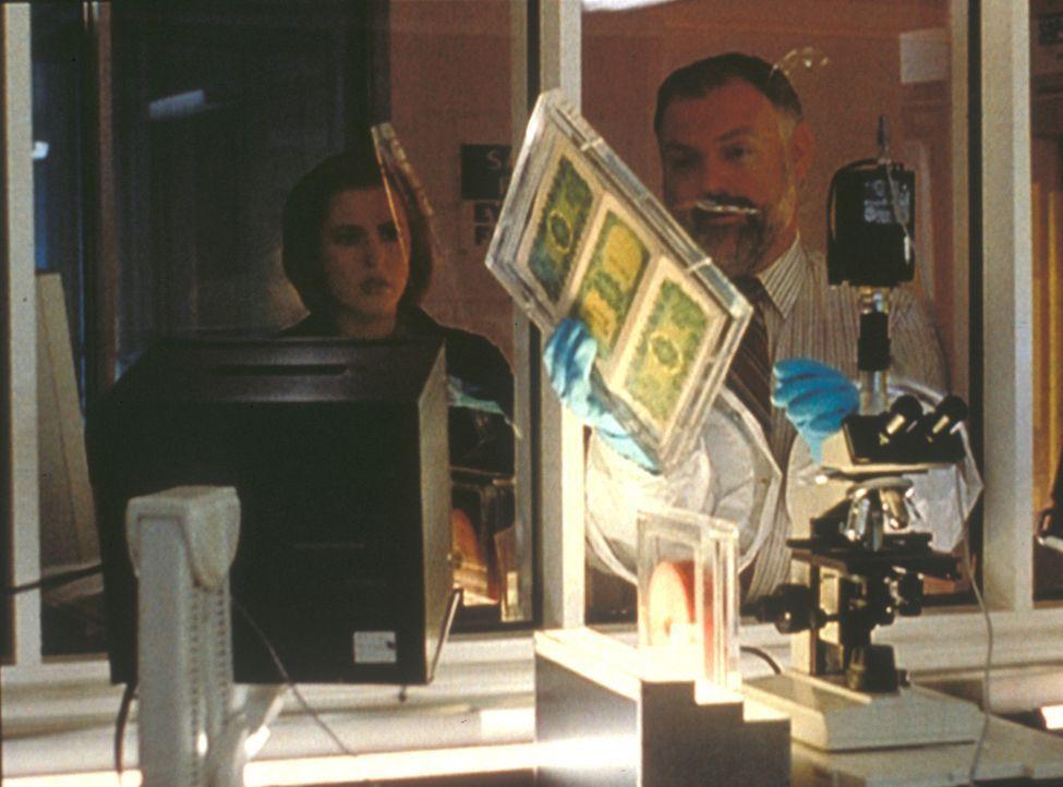 Scully (Gillian Anderson, l.) stellt mit Hilfe des Seuchen-Spezialisten Dr. Leavitt (John B. Lowe, r.) fest, dass die Dollar-Noten mit einem tödlich... - Bildquelle: TM +   2000 Twentieth Century Fox Film Corporation. All Rights Reserved.