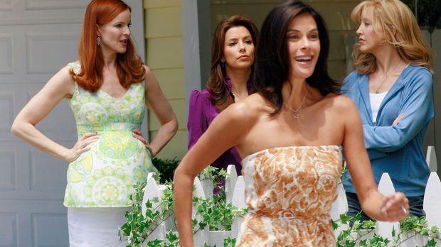 Lynette (Felicity Huffman, r.), Bree (Marcia Cross, l.), Gabrielle (Eva Longo...