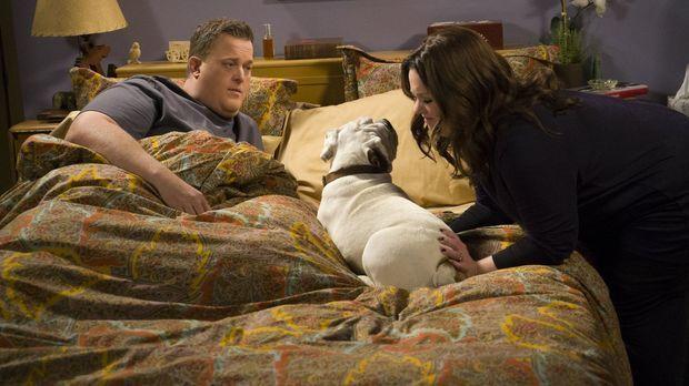 Als Mike (Billy Gardell, l.) einen herrenlosen Hund mit nach Hause bringt, fr...