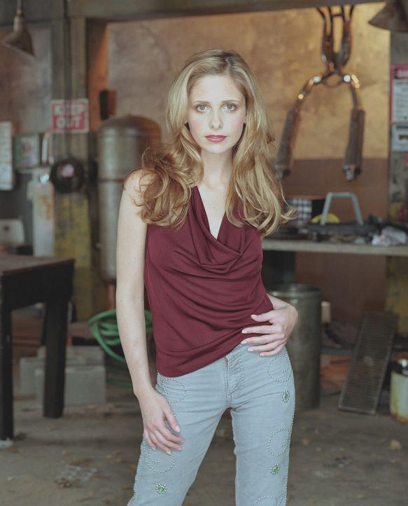 (7. Staffel) - Nachdem sie im Paradies war, ist der Alltag mit Dämonen, Geld- und Erziehungssorgen die Hölle. Zu all den Problemen fühlt Buffy (Sara... - Bildquelle: TM +   Twentieth Century Fox Film Corporation. All Rights Reserved.
