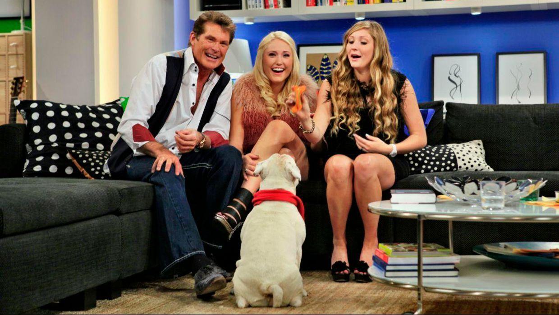 fruehstuecksfernsehen-studiohund-lotte-in-action-im-studio-006 - Bildquelle: Ingo Gauss