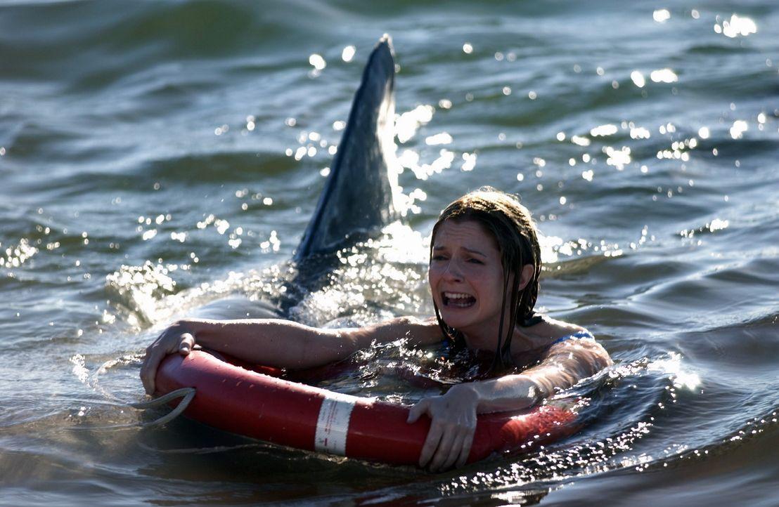 Obwohl ihr Bruder sie eindringlich warnt, geht Danielle (Shannon Lucio) im Meer baden. Da nähert sich auch schon der erste Hai ... - Bildquelle: CBS Television