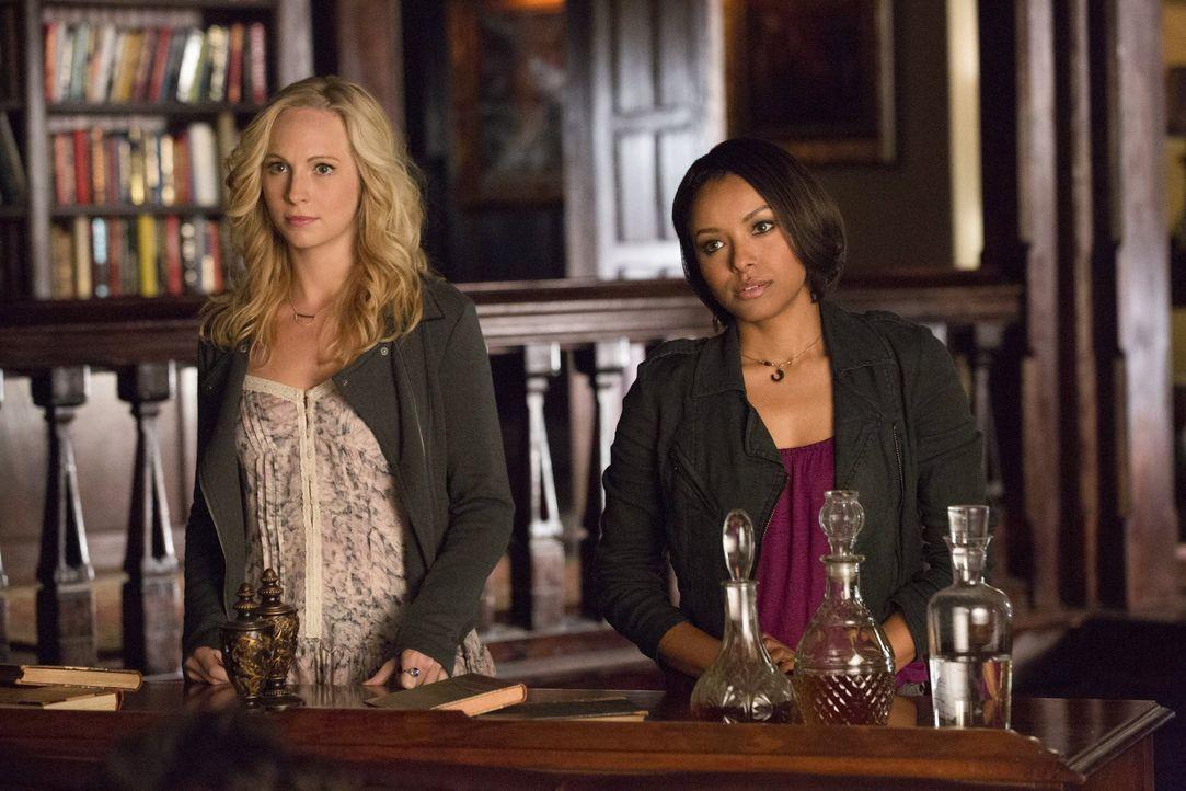 Lange Gesichter bei Caroline und Bonnie - Bildquelle: Warner Bros. Entertainment Inc.