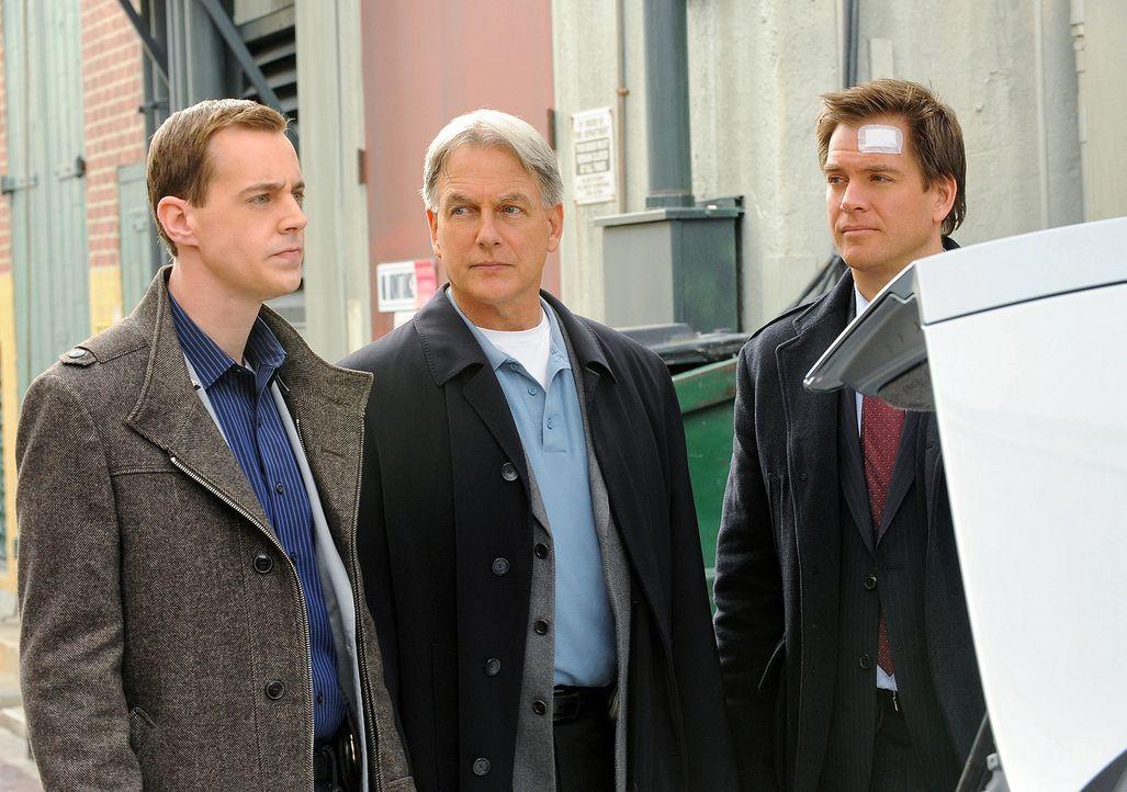 Das Team bekommt den Auftrag, die Tochter des Verteidigungsministers von Belgravien zu beschützen: McGee (Sean Murray, l.), Gibbs (Mark Harmon, M.)... - Bildquelle: CBS Television