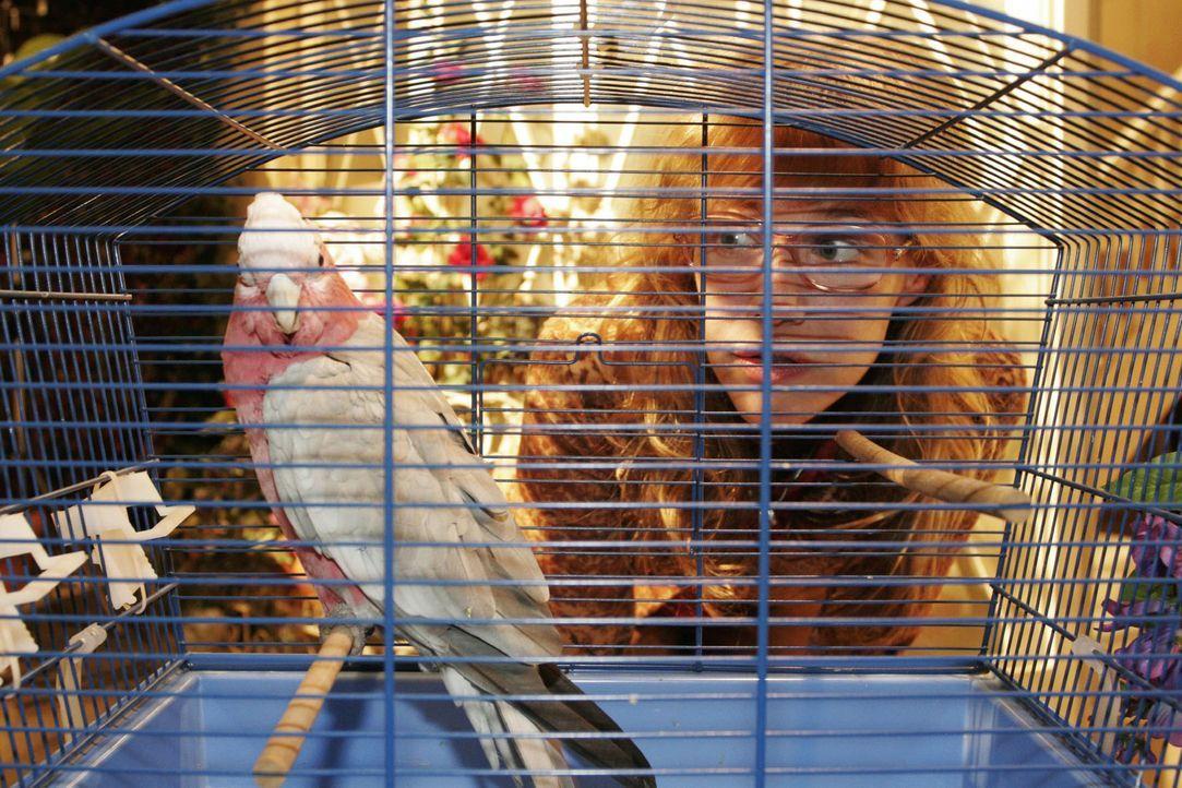 Als Lisa (Alexandra Neldel) den verstörten Vogel anblickt, weiß sie, wie dumm es ist, diesem die Schuld an dem Unfall zu geben ... (Dieses Foto von... - Bildquelle: Noreen Flynn Sat.1