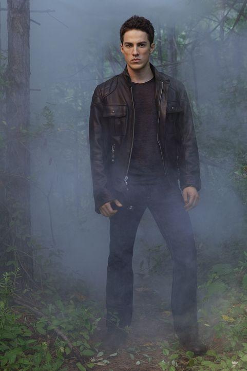(2. Staffel) - Unkontrollierte Wutausbrüche bestimmen derzeit Tylers (Michael Trevino) Leben, ob der sagenumwobene Familien Fluch der Lockwoods etwa... - Bildquelle: Warner Brothers