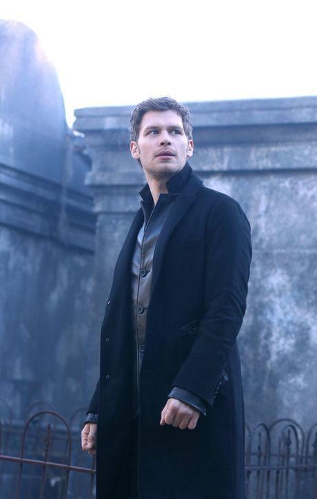 Während Klaus (Joseph Morgan) neue Pläne im Kampf gegen Finn schmiedet, erkennt Rebekah, dass der Körper in dem sie steckt ihr noch mehr Probleme ma... - Bildquelle: Warner Bros. Entertainment, Inc