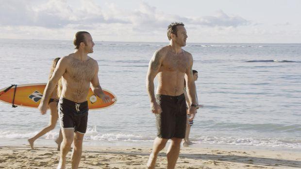 Hawaii Five-0 - Hawaii Five-0 - Staffel 7 Episode 16: Geflügelsalat