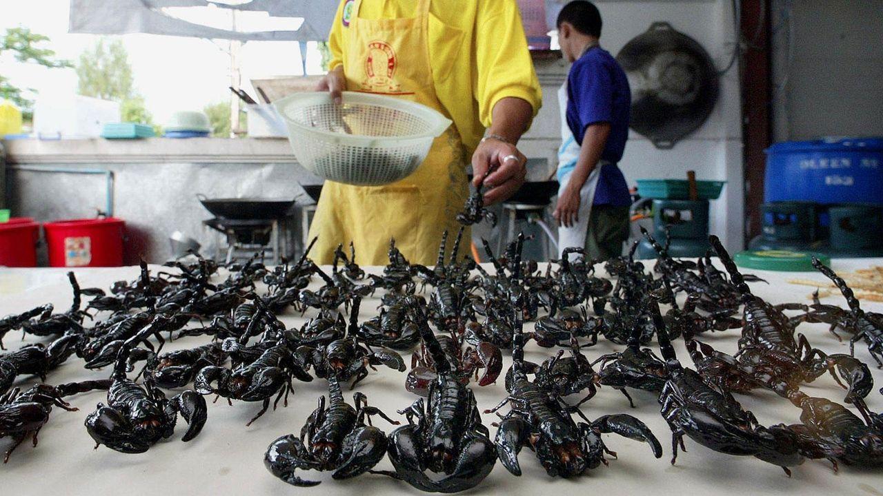 Essen extrem - Bildquelle: AFP