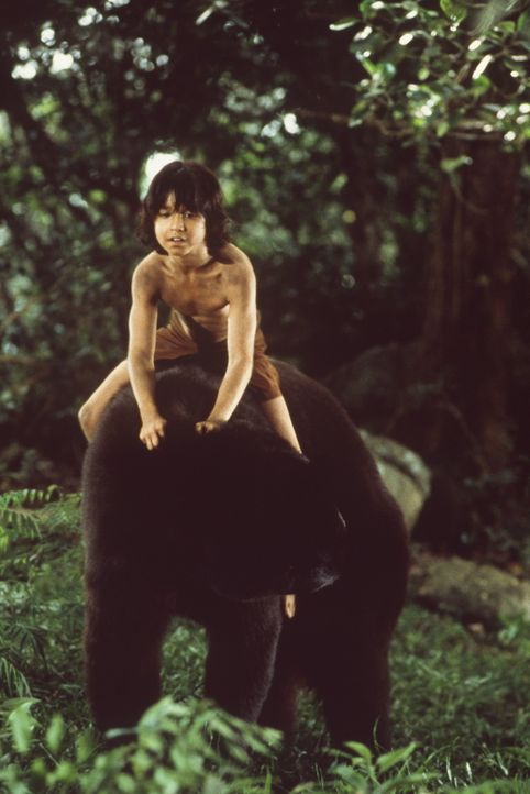 Mowgli (James Williams) und sein großer Freund, der Bär Baloo ... - Bildquelle: MDP WORLDWIDE