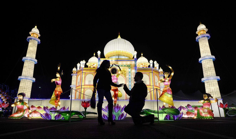 Heiratsantrag-Kniefall-1-dpa - Bildquelle: dpa
