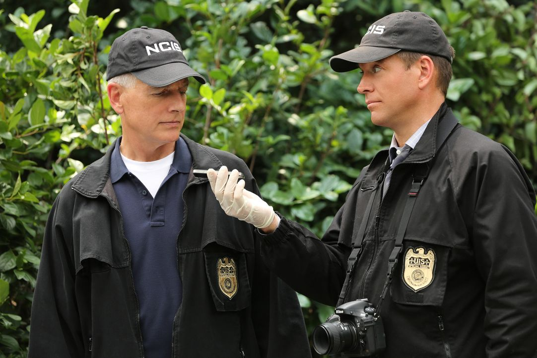 Warum wurde ein hoher Marineoffizier in unmittelbarer Nähe des Weißen Hauses ermordet? Gibbs (Mark Harmon, l.) und DiNozzo (Michael Weatherly, r.) e... - Bildquelle: Michael Yarish 2014 CBS Broadcasting, Inc. All Rights Reserved