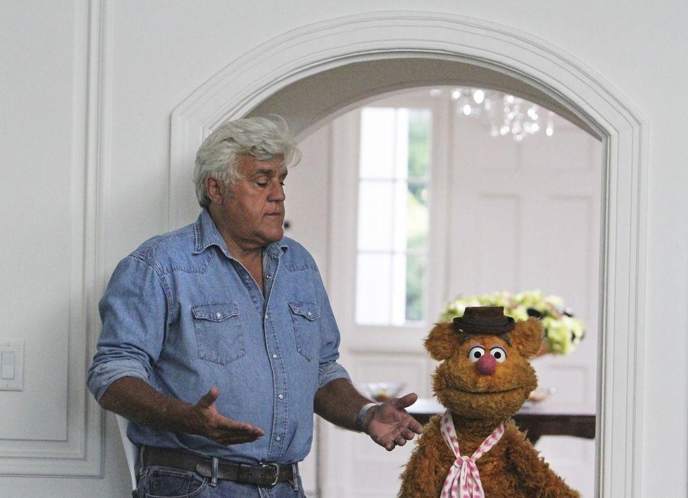 Kermit versucht mit allen Mitteln, Miss Piggy aufzuheitern, während Fozzie Bär (r.) auf eine Party bei Jay Leno (l.) eingeladen ist ... - Bildquelle: Andrea McCallin ABC Studios