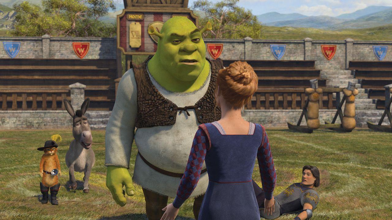 Kaum heimgekehrt, macht Shrek (M.) Prinz Charmings (r.) Schreckensherrschaft ein Ende. Doch dann erwartet ihn eine Überraschung, die ihn aus den Lat... - Bildquelle: TM &   2007 Dreamworks Animation LLC