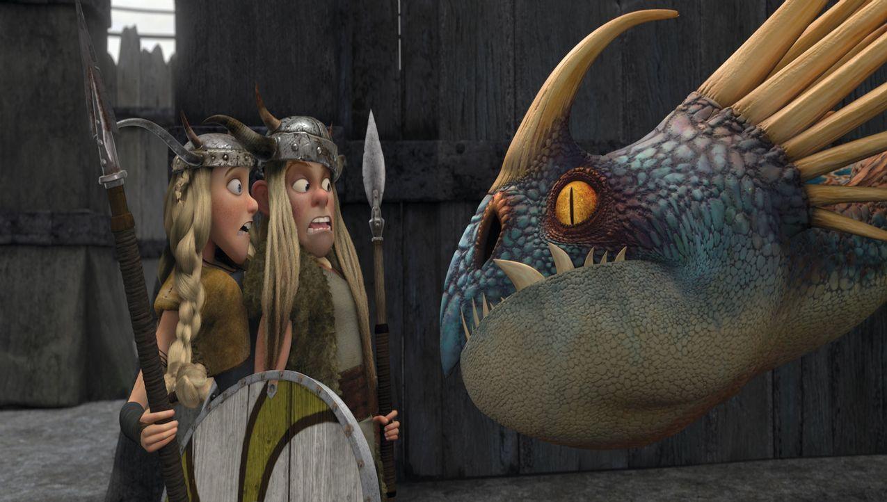 Neugierig betrachtet der Donnertrommler die sonst so mutigen Zwillinge Raffnuss (r.) und Taffnuss (l.). Die haben ihre Angst vor dem gefährlich aus... - Bildquelle: 2012 by DreamWorks Animation LLC. All rights reserved.