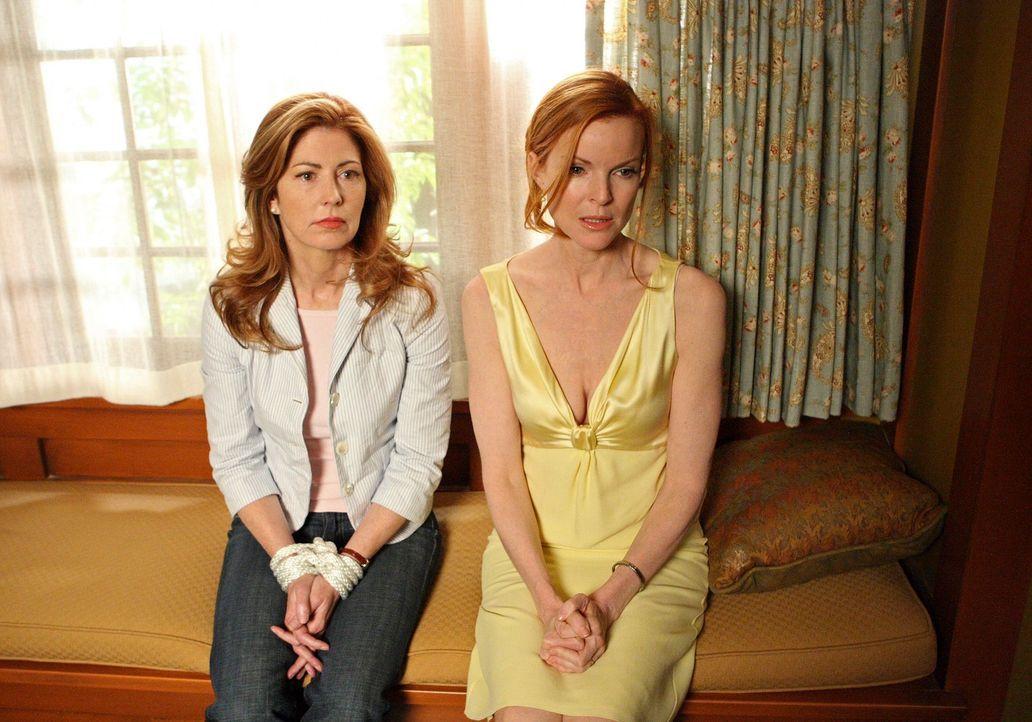 Müssen befürchten, ermordet zu werden: Katherine (Dana Delany, l.) und Bree (Marcia Cross, r.) ... - Bildquelle: ABC Studios