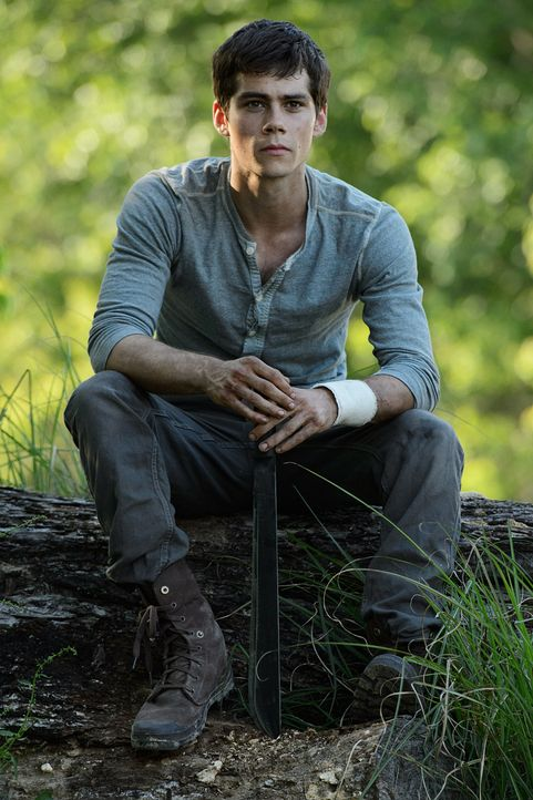 Maze-Runner-MR_01018_1400-c-2013- Twentieth- Century- Fox - Bildquelle: 2013 Twentieth Century Fox