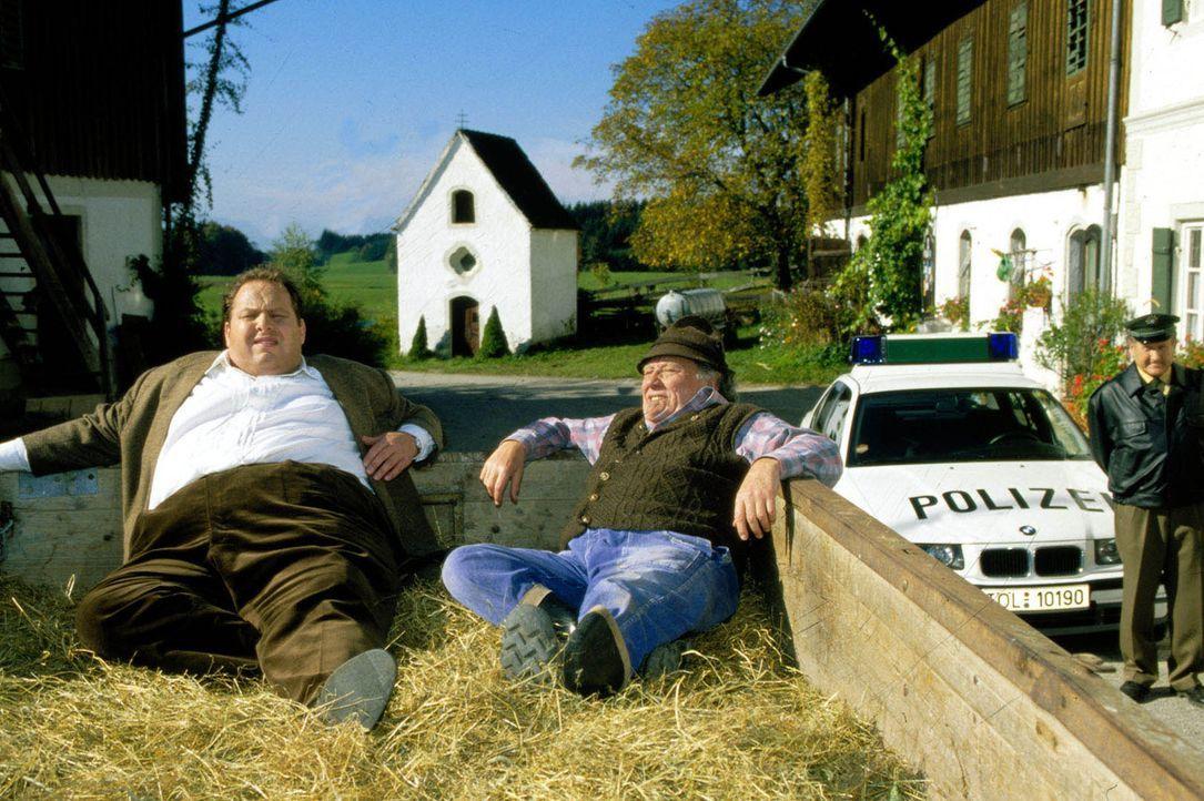 Ein richtiges Gespräch unter Männern bedarf einer angenehmen Umgebung! Für den Hopfnerbauern (Axel Bauer, M.) ist das der Heuwagen - und Kommissar B... - Bildquelle: Magdalena Mate Sat.1