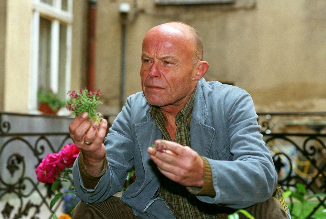 Saubermann? Herr Blaubach (Volkmar Kleinert) kümmert sich besorgt um seinen Vorgarten ... - Bildquelle: Thomas Ernst Sat.1