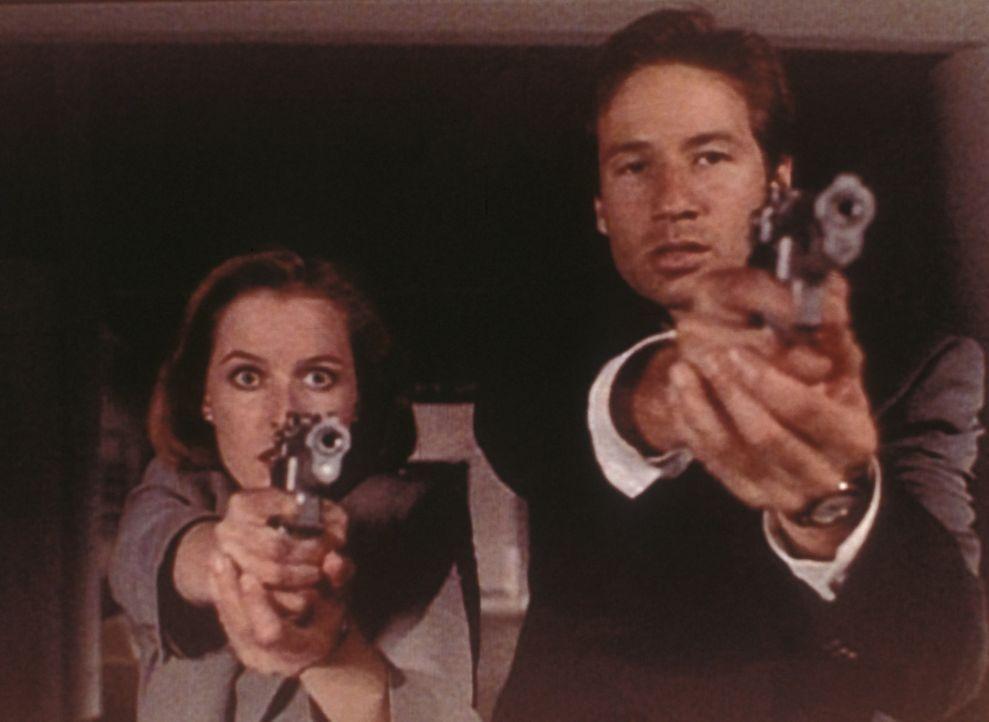 Scully (Gillian Anderson, l.) und Mulder (David Duchovny, r.) versuchen, einen vermeintlichen Serienmörder zu verhaften, der jedoch mit Waffengewalt... - Bildquelle: TM +   2000 Twentieth Century Fox Film Corporation. All Rights Reserved.