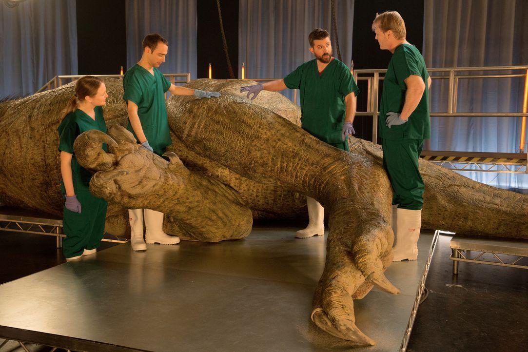 Autopsie eines Killers: Die vier Veterinäre und Paläontologen sezieren unter realistischen Umständen eine lebensnahe Rekonstruktion eines anatomisch... - Bildquelle: National Geographic Channels/Stuart Freedman