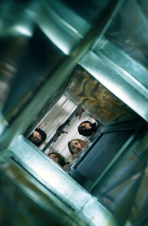 Auf in den Kampf!: (v.l.n.r.) Dolly (Mercedes Ruehl), Linda (Rosie Perez), Shirley (Brooke Shields) und Bella (N'Bushe Wright) ... - Bildquelle: ABC