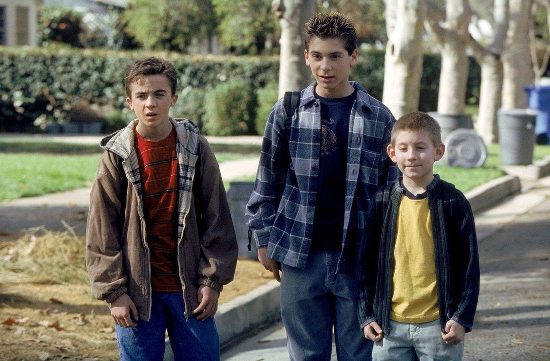 Malcolm (Frankie Muniz, l.), Reese (Justin Berfield, M.) und Dewey (Erik Per Sullivan, r.) entdecken auf dem Heimweg von der Schule ein altes Mini-B... - Bildquelle: TM +   2000 Twentieth Century Fox Film Corporation. All Rights Reserved.