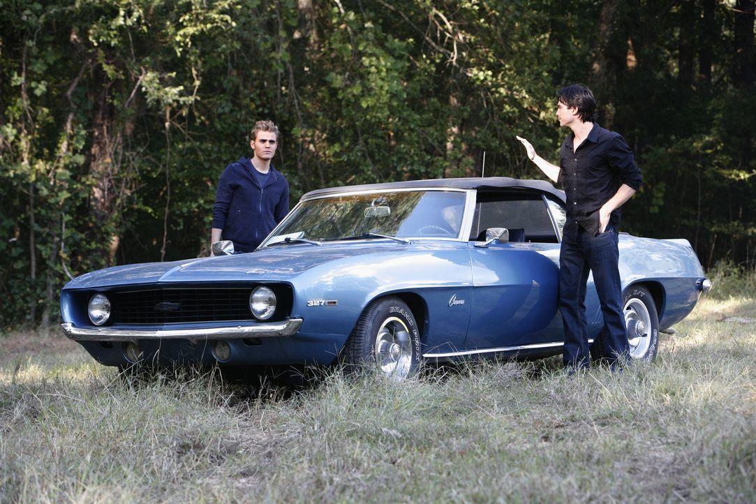 Sind auf der Suche nach Elena, welche am Abend des Maskenballs von einem Mann entführt wurde: Damon (Ian Somerhalder, r.) und Stefan Salvatore (Paul... - Bildquelle: Warner Brothers