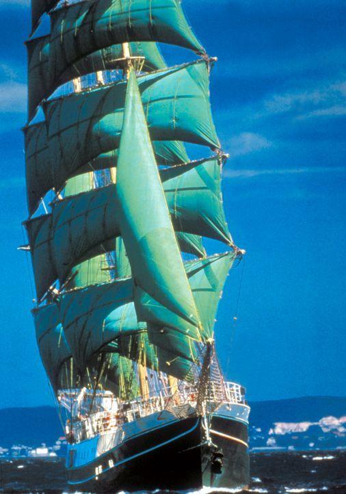 Die Green Sails sticht auf See neuen Abenteuern entgegen .... - Bildquelle: Cinetel Films